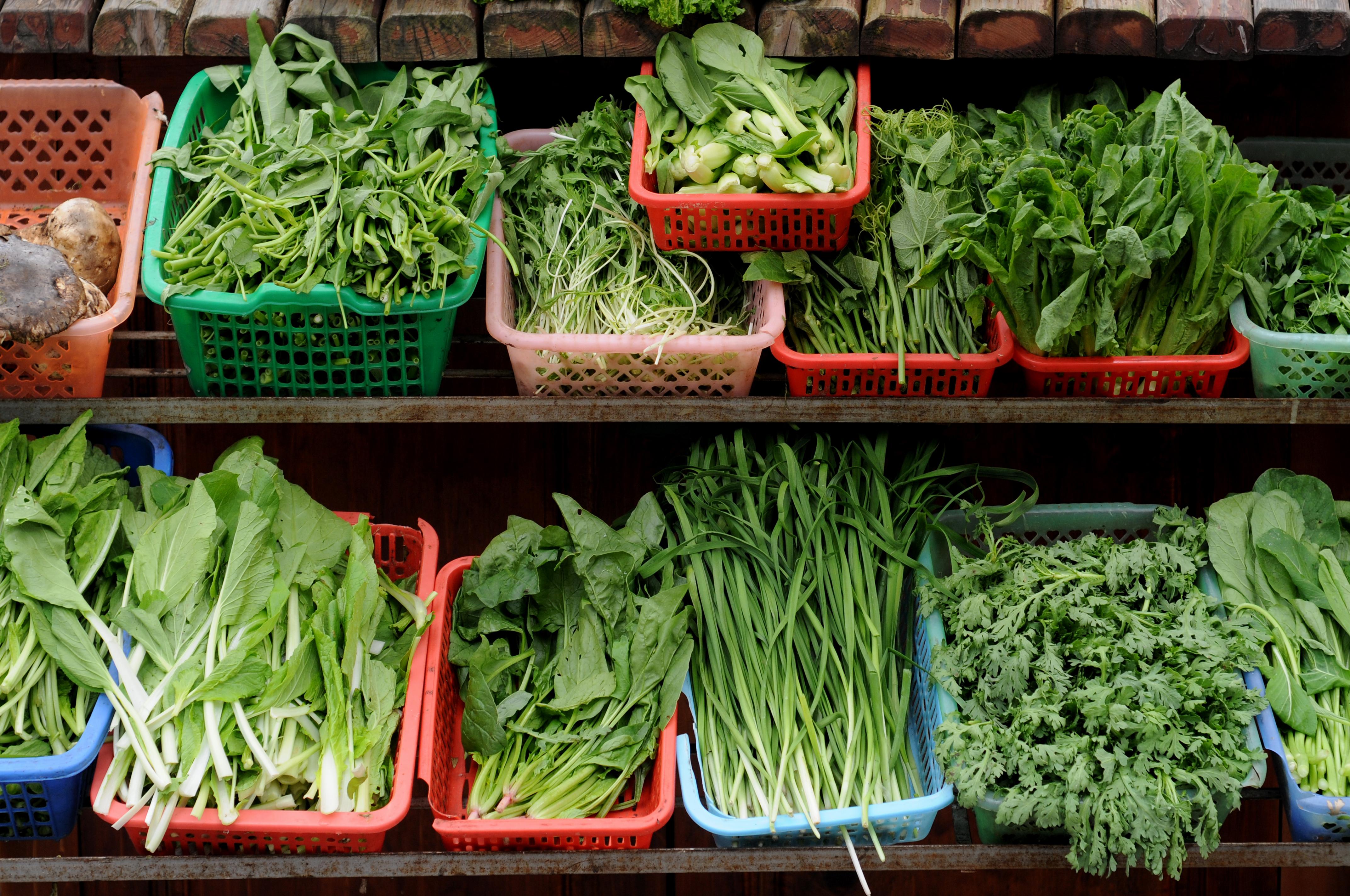 Fresh Seasonal Greens for Authentic Italian Dishes